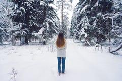 Красивый портрет девушки в лесе зимы Стоковое фото RF