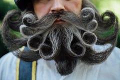 Красивый портрет храброго Scot с изумительными бородой и усиком завивает в венгерском стиле Стоковые Изображения RF
