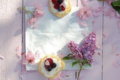 Красивый, предпосылка весны флористическая с цветками японской вишни зацветая Стоковые Фотографии RF