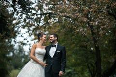 Красивый представлять пар свадьбы стоковое фото
