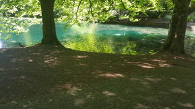 Красивый природный парк Стоковые Изображения