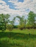 Красивый простый горизонт неба в поле стоковые фотографии rf