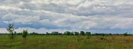 Красивый простый горизонт неба в поле стоковые изображения