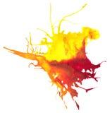 Красивый прослеженный splatter акварели вектора Стоковые Изображения