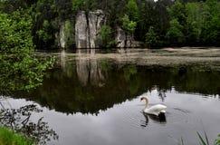Красивый пруд Vezicky Стоковое Изображение