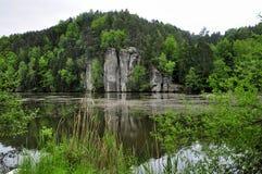 Красивый пруд Vezicky Стоковая Фотография