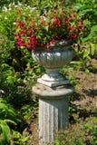 Красивый плантатор цветка камня сада Стоковые Фотографии RF