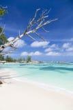 Красивый пляж, Ла Digue, Сейшельские островы Стоковое Изображение