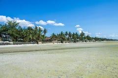 Красивый пляж с голубым небом Стоковое Изображение RF