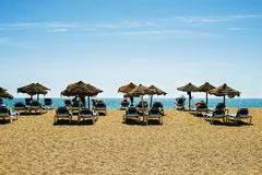 Красивый пляж с sunbeds и зонтиками Стоковое Фото