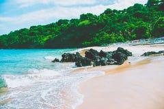 Красивый пляж, чистая вода Индийского океана на солнечном дне Стоковое Изображение