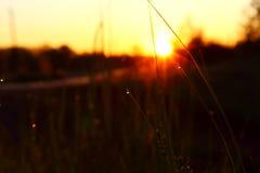 Красивый рассвет лета Стоковые Изображения RF