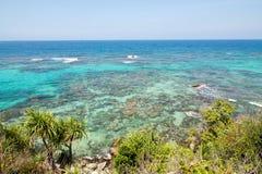 Красивый риф около пляжа Anora в острове Karimunjawa Стоковое фото RF