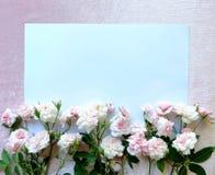 Красивый розы пинка на белой бумаге Стоковая Фотография