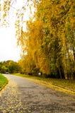 Красивый романтичный переулок Стоковые Фото