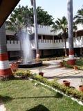 Красивый сад с фонтаном стоковое фото rf