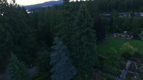 Красивый сад в Аляске сток-видео