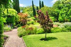 Красивый сад в солнечном свете Стоковые Фотографии RF