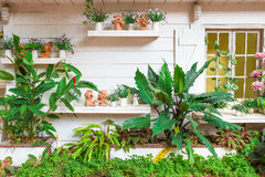 Красивый сад - домашний экстерьер Стоковое Изображение