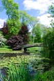 Красивый сад с мостом стоковые фотографии rf