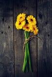 Красивый свежий желтый цвет Gerbers весны на старом винтажном деревянном Tabl Стоковое Изображение RF