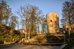 Красивый свет после полудня в парке с старыми руинами замка Стоковое Изображение RF