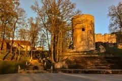 Красивый свет после полудня в парке с старыми руинами замка Стоковые Фото