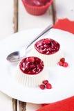 Красивый светлый ванильный десерт Стоковые Фото
