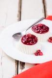 Красивый светлый ванильный десерт Стоковое фото RF