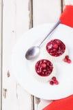 Красивый светлый ванильный десерт Стоковая Фотография