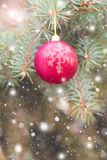 Красивый сияющий шарик весит ест Стоковые Фото
