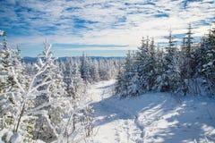 Красивый снежный ландшафт в Квебеке, Канаде стоковое фото