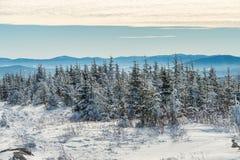 Красивый снежный ландшафт в Квебеке, Канаде стоковые изображения