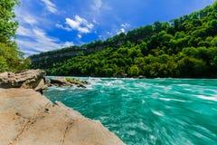Красивый сногсшибательный взгляд реки и леса escarpment Ниагарского Водопада спеша на солнечный летний день Стоковое Фото