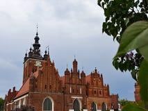 Красивый собор в центре Гданьск стоковое фото rf