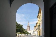 Красивый собор Севильи от внешней стороны перспективы Стоковое Фото
