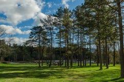 Красивый солнечный день в национальном парке стоковое изображение