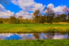 Красивый солнечный летний день стоковое изображение rf