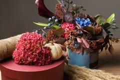 Красивый состав осени высушенных цветков и листьев луга Стоковое фото RF
