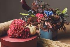 Красивый состав осени высушенных цветков и листьев луга Стоковая Фотография