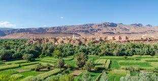 Красивый сочный зеленый оазис с зданиями и горами на ущелье Todra, Марокко, Северной Африке Стоковая Фотография RF