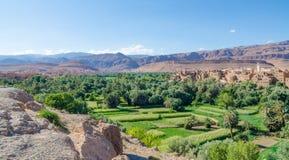 Красивый сочный зеленый оазис с зданиями и горами на ущелье Todra, Марокко, Северной Африке Стоковое Изображение