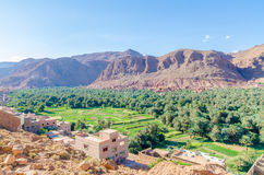 Красивый сочный зеленый оазис с зданиями и горами на ущелье Todra, Марокко, Северной Африке Стоковые Фотографии RF