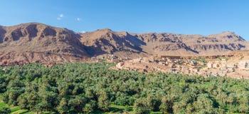 Красивый сочный зеленый оазис с зданиями и горами на ущелье Todra, Марокко, Северной Африке Стоковое фото RF