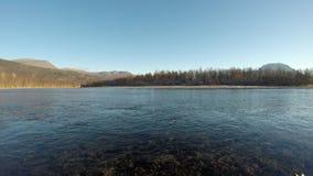 Красивый спокойный ландшафт реки в последней осени с голубым небом и лесом сток-видео