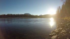 Красивый спокойный ландшафт реки в последней осени с голубым небом и лесом видеоматериал
