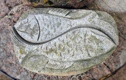 Красивый старый естественный камень с выгравированными рыбами, Литвой стоковое изображение