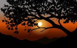 Красивый сумрак с силуэтом дерева иллюстрация штока