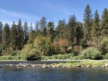 Красивый сценарный взгляд реки в предыдущем падении стоковые фотографии rf
