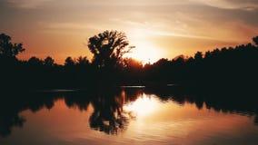 Красивый сценарный заход солнца над лесом около озера Timelapse акции видеоматериалы